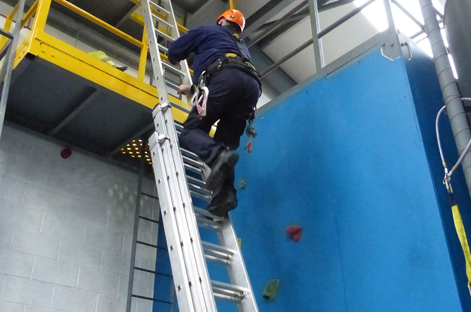 Leaning Ladder And Stepladder Training Course